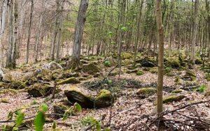 Kleines Felsenmeer bei Miltenberg