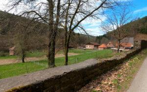 Fränkischer Marienweg-Südroute: Kartause Grünau