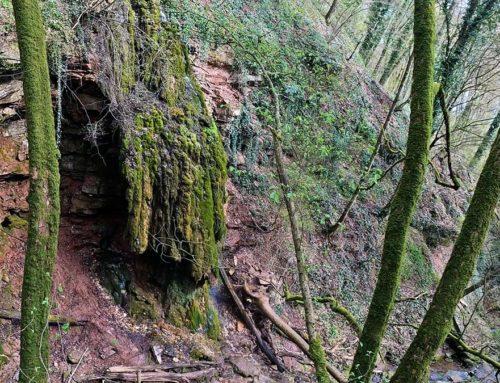 Wasserfälle im Spessart – Es gibt sie, aber wo?